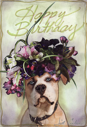 Happy Birthday Dog Jill Culver Creations